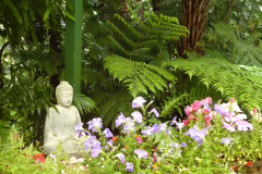 Buddha Statue in the Summer flowers