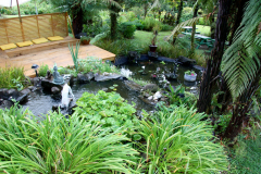 View over our pretty Pond