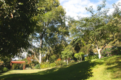 View from the Main Lawn